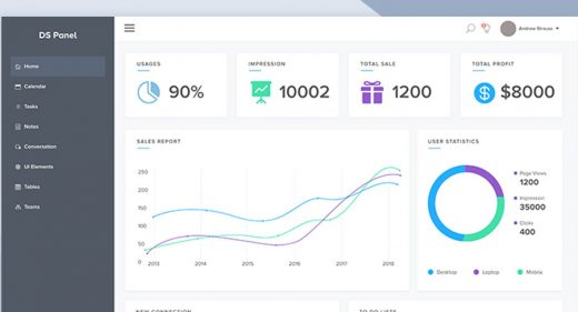 DS Panel Admin Dashboard Template