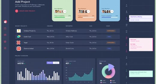 ProManage dashboard XD template