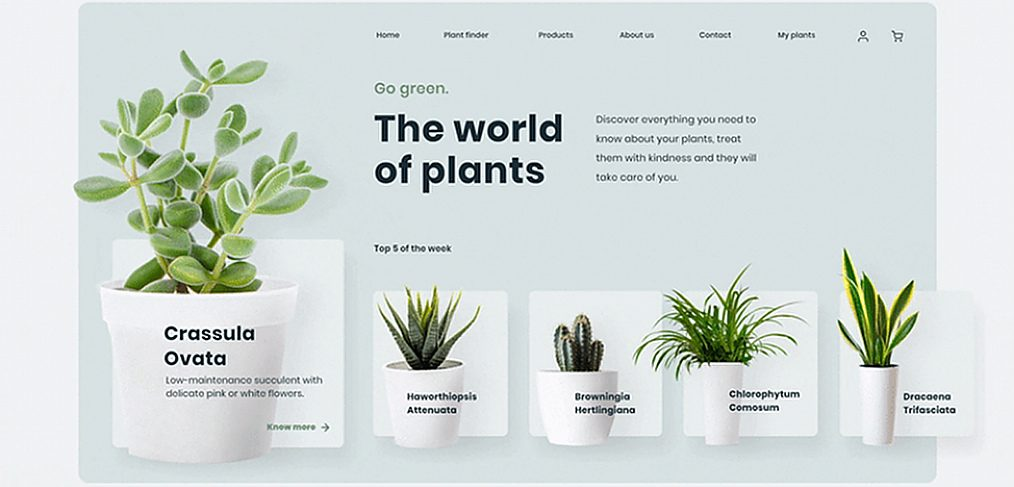 Plants website XD animation